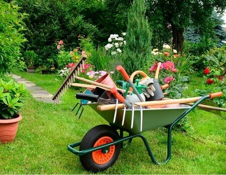 mantenimiento integral de jardin en chiclana de la frontera